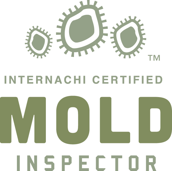 Carrollton mold inspection near me
