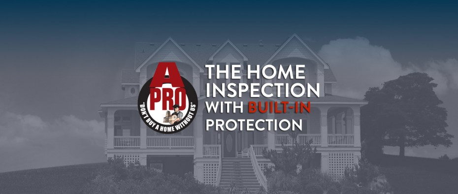 Exterior Home Inspection in Frisco